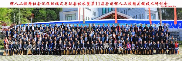 第11届AI会